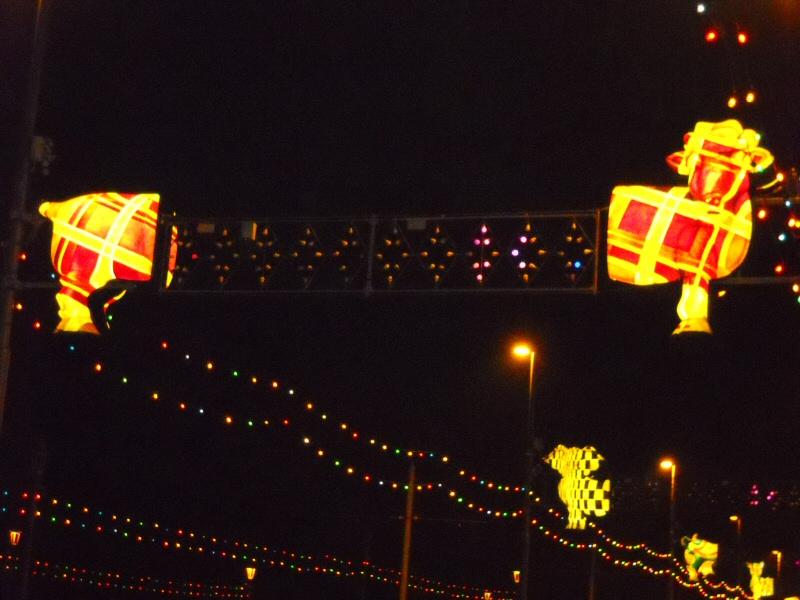 Sarah Myerscough (Artist) - Blackpool Illuminations Gallery